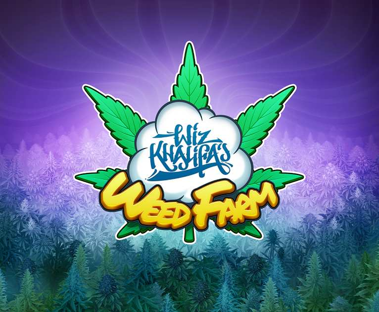 Weed Industy Buiness To Build For